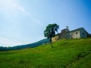 maison-paysage-vert